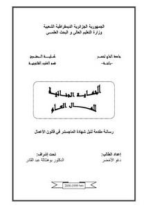 رسائل قانونية جزائرية - الحماية الجنائية للمال العام